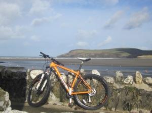 Voodoo bike, Parrog